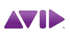 AVID-large